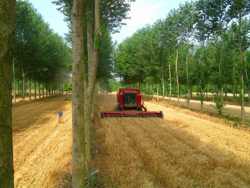 Земеделски имоти и зелени евросубсидии